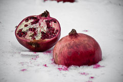 Pomegranate in the snow - retro Stock Images