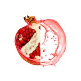 Pomegranate splash Royalty Free Stock Images