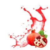 Pomegranate splash Royalty Free Stock Image