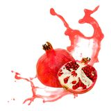 Pomegranate splash Stock Photography