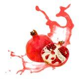 Pomegranate splash Stock Photography