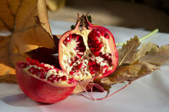 Pomegranate still life. Close up of a pomegranate fruit surrounded by fall colored leaves, nuts adn berries. focus on the pomegranate. Other items strongly out Stock Images