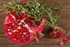 Pomegranate and thyme. Royalty Free Stock Photography