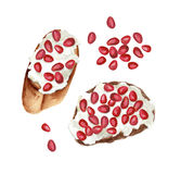 Watercolor fruit toasts. Pomegranate toasts with white cheese, watercolor food illustration stock illustration