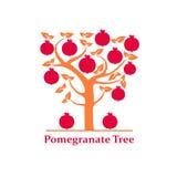 Pomegranate tree isolated Royalty Free Stock Photo