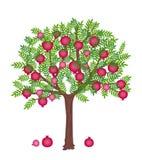 Pomegranate tree Royalty Free Stock Photos