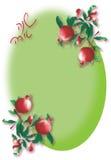 Pomegranate vintage frame royalty free stock images