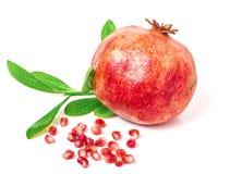 Pomegranate on white background.  royalty free stock photo