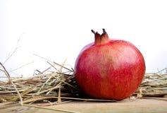 Pomegranate on white background Royalty Free Stock Photography