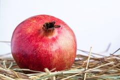 Pomegranate on white background Royalty Free Stock Photo