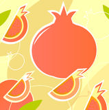 Pomegranate - wild retro stylized texture - orange Stock Images