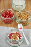 Pomegranate Yoghurt Stock Image