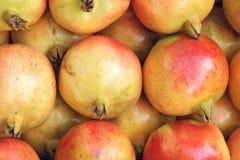 Pomegranatefrukter Royaltyfri Bild