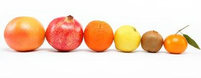 pomegranates цитрусовых фруктов Стоковая Фотография RF