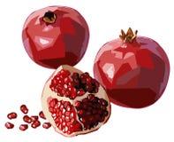 Pomegranates. Illustration of pomegranates with seeds Stock Photos