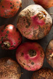 Pomegranates. Stock Images