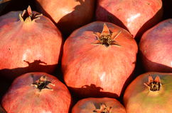 Israeli Pomegranates Stock Photos