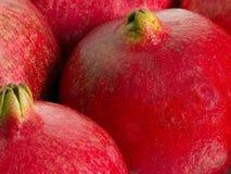 Pomegranates. Close up Royalty Free Stock Image