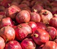 pomegranates Imagens de Stock