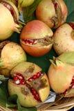 pomegranates Arkivbilder