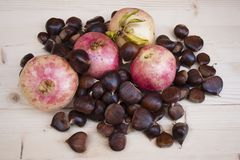 Pomegranates and chestnuts in autumn. Sweet chestnut browns are one of the symbols of the fall season Stock Photography