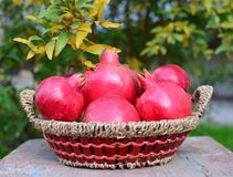 Pomegranates. Fresh nature vitamin Royalty Free Stock Images