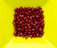 Pomegranates fresh red seeds Stock Photos