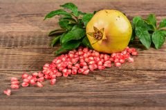 Pomegranates Stock Images