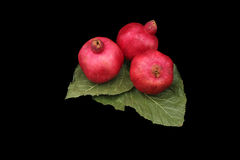 Pomegranates on green leaves symbols of the Jewish new year (Ros. Pomegranates are traditional symbol of Jewish new year symbolizing many good deeds as the seeds Royalty Free Stock Photos