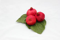 Pomegranates on green leaves symbols of the Jewish new year (Ros Royalty Free Stock Image