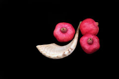 Pomegranates and a horn symbols of the Jewish new year (Rosh HaS. Pomegranates are traditional symbol of Jewish new year symbolizing many good deeds as the seeds Royalty Free Stock Photos