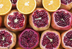 Pomegranates and oranges composition Royalty Free Stock Image