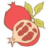 Pomegranates Stock Photography