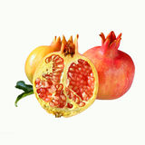 Pomegranates. Rosh hashanah (jewesh New Year) traditional symbol Stock Photos