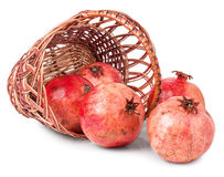 Pomegranates spilled from basket Stock Photography