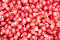 Pomegranates. Stock Image