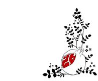 pomegranatewhite Fotografering för Bildbyråer