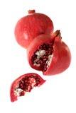 pomegrante Arkivbild
