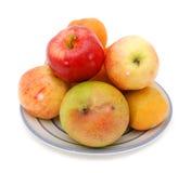 pomelo сливы мангоа яблок Стоковое фото RF