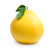 Pomelo. Yellow pomelo isolated on white Royalty Free Stock Photo
