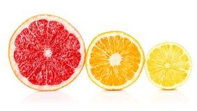 Pomelo anaranjado del limón de las frutas frescas en corte Imagenes de archivo