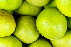 Pomelo background Royalty Free Stock Images