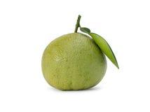 Pomelo citrus fruit. Isolated on white background Stock Images