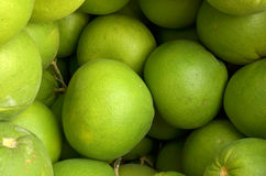 Pomelo Citrus grandis Royalty Free Stock Images
