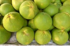 Pomelo Citrus grandis Stock Image