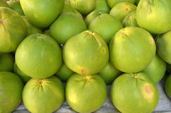 Pomelo Citrus grandis Stock Photography