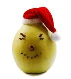 Pomelo de la Navidad Foto de archivo
