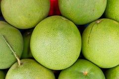 Pomelo fruit Stock Photography
