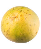 Pomelo Fruit III Stock Photo