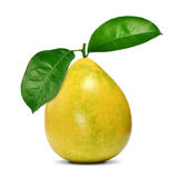 Pomelo fruit with leaves Royalty Free Stock Photography